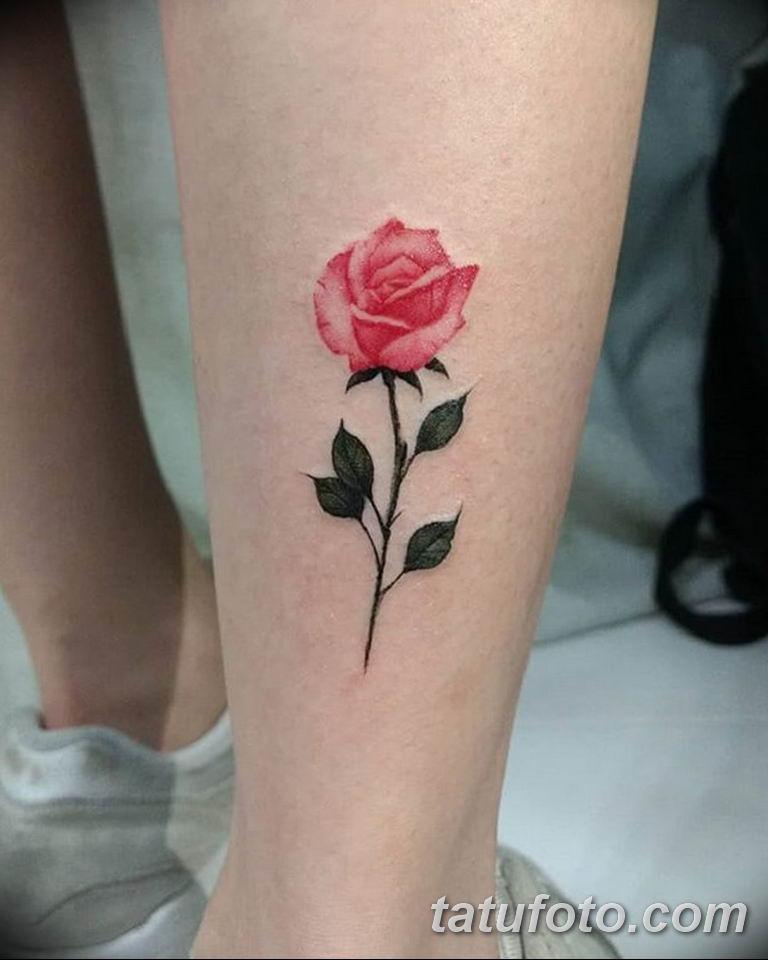 Фото красивые розы тату 12.08.2019 №023 - beautiful roses tattoo - tatufoto.com