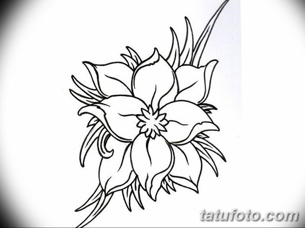 Фото эскиза тату жасмин 22.08.2019 №010 - jasmine tattoo sketch - tatufoto.com