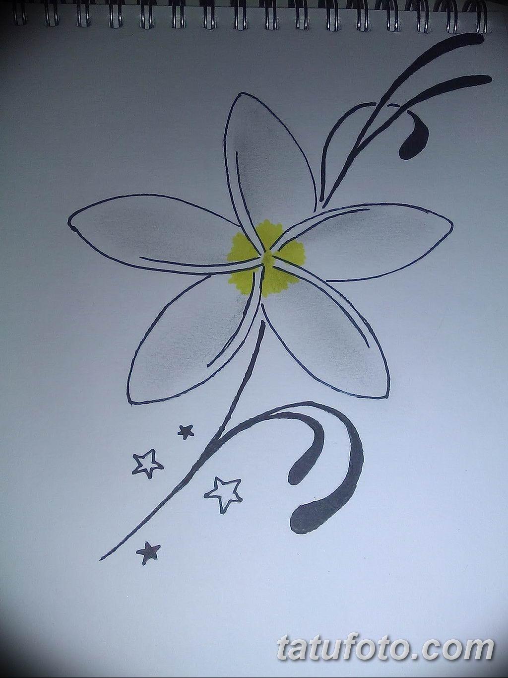 Фото эскиза тату жасмин 22.08.2019 №011 - jasmine tattoo sketch - tatufoto.com