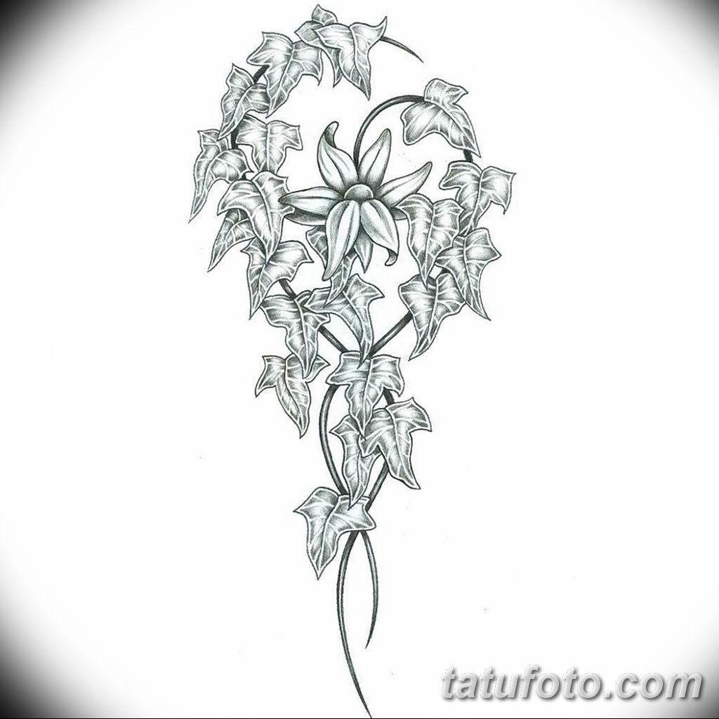 Фото эскиза тату жасмин 22.08.2019 №012 - jasmine tattoo sketch - tatufoto.com