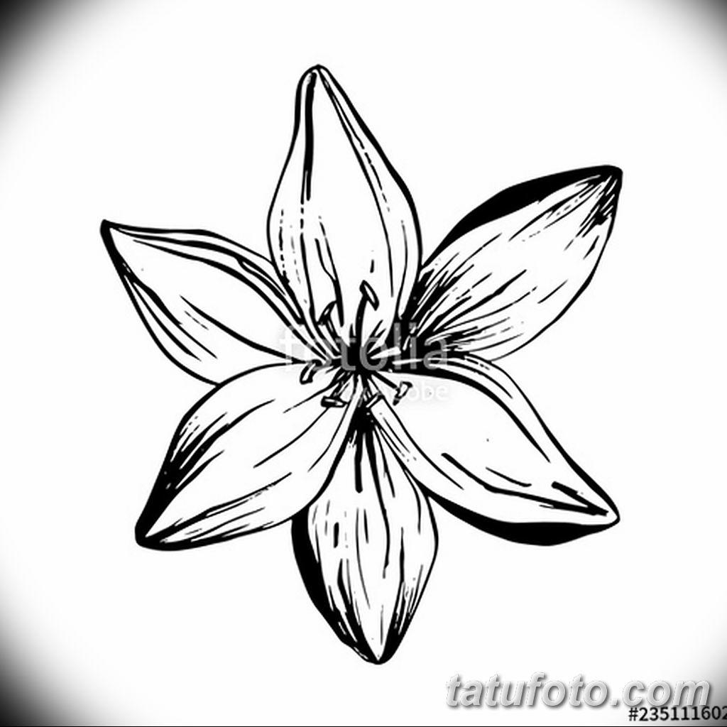 Фото эскиза тату жасмин 22.08.2019 №015 - jasmine tattoo sketch - tatufoto.com