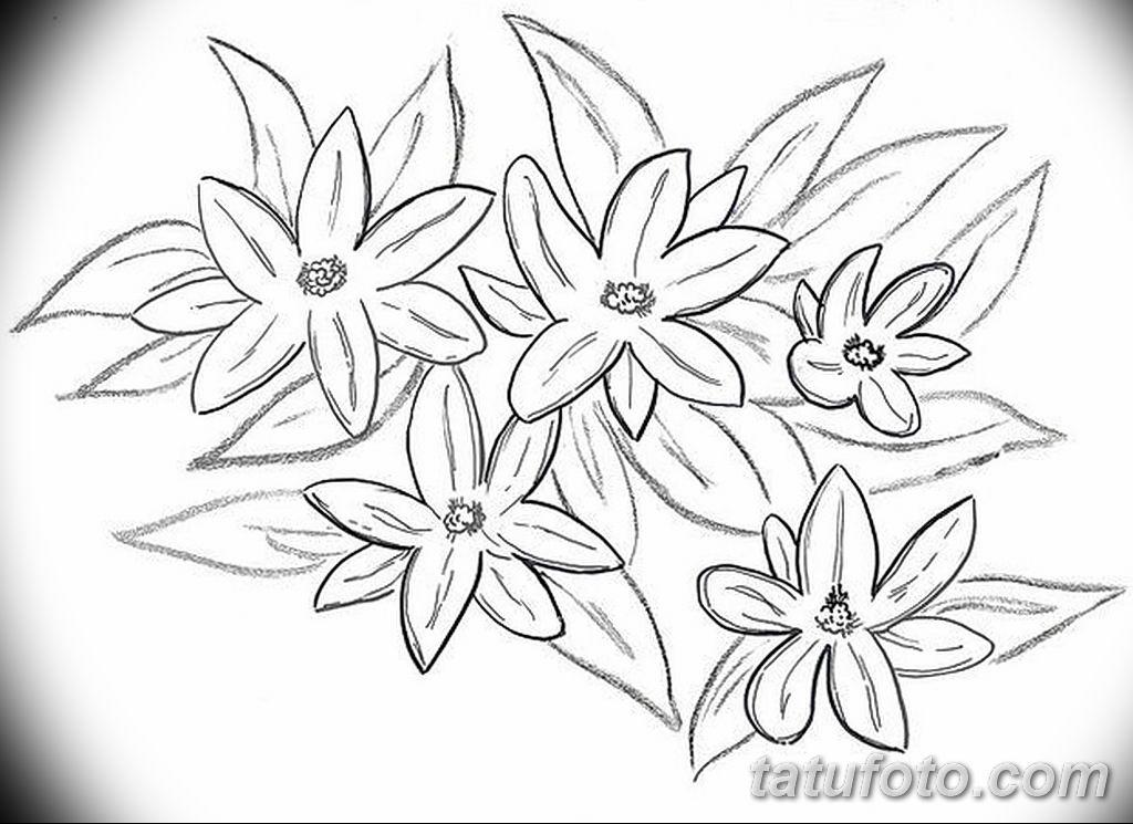 Фото эскиза тату жасмин 22.08.2019 №020 - jasmine tattoo sketch - tatufoto.com