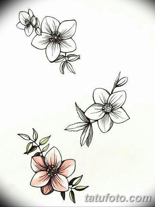 Фото эскиза тату жасмин 22.08.2019 №024 - jasmine tattoo sketch - tatufoto.com