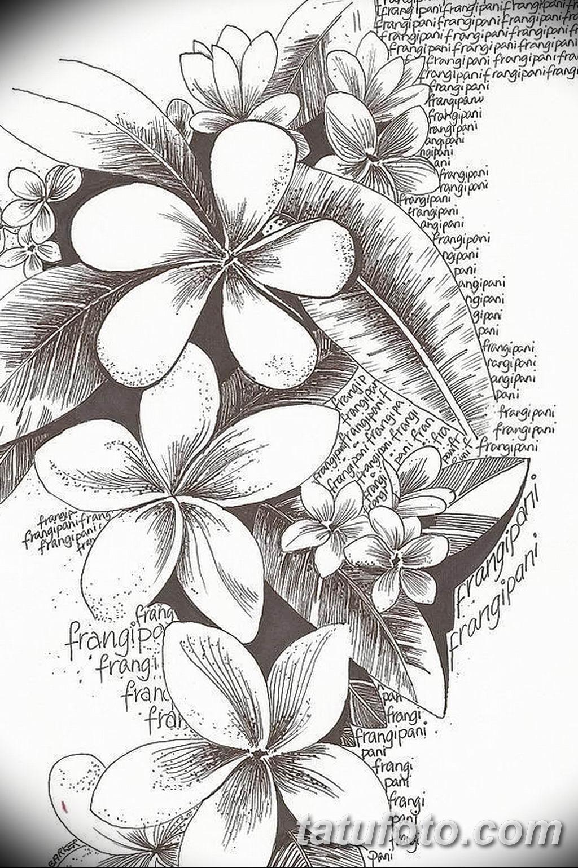 Фото эскиза тату жасмин 22.08.2019 №035 - jasmine tattoo sketch - tatufoto.com