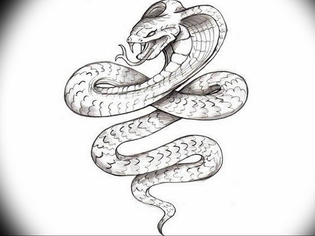 змея рисунок тату