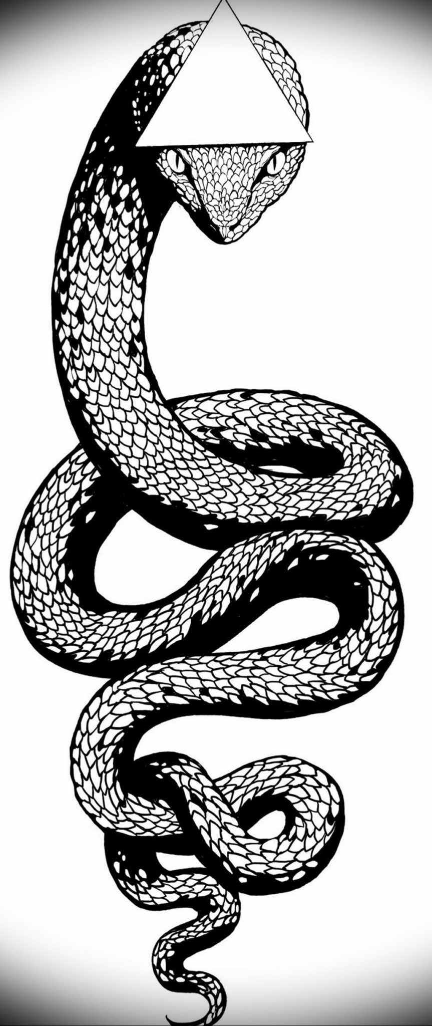 змея тату эскиз маленькая 14.08.2019 №031 - sketches small tattoo -  tatufoto.com - tatufoto.com