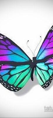 тату бабочки эскизы цветные 16.09.2019 №001 – butterfly tattoo sketches colo – tatufoto.com