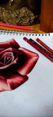 тату роза эскиз цветной 16.09.2019 №006 – tattoo rose sketch colored – tatufoto.com