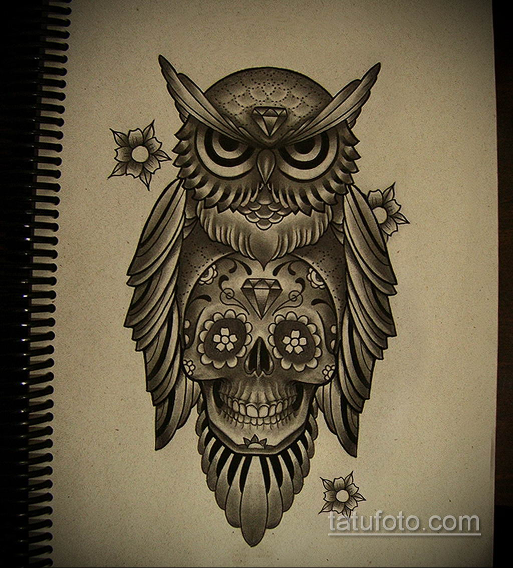 тату сова череп эскиз 17.09.2019 №006 - Owl tattoo skull sketch - tatufoto.com