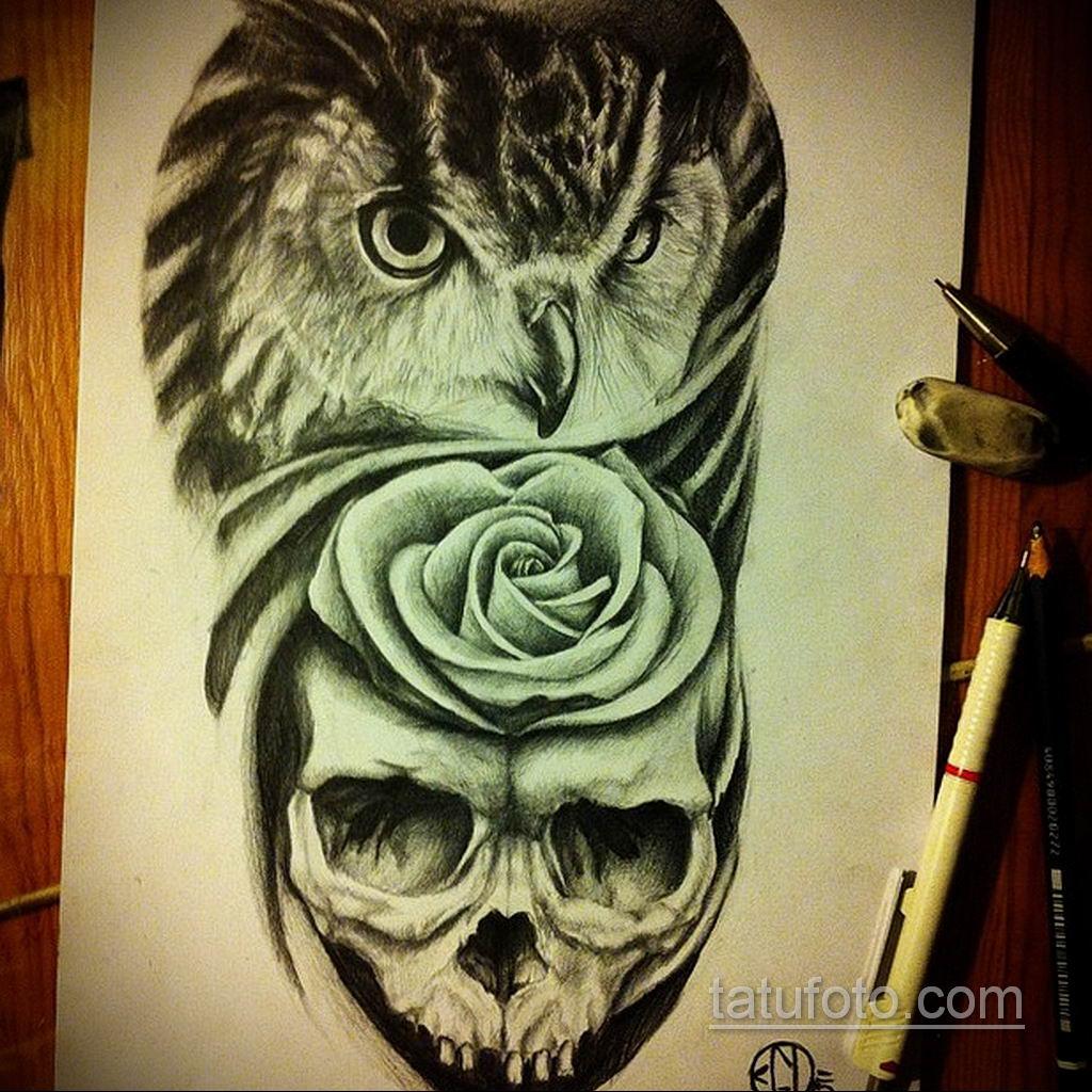 тату сова череп эскиз 17.09.2019 №014 - Owl tattoo skull sketch - tatufoto.com