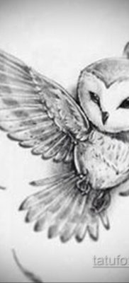 тату совы эскизы женские 14.09.2019 №041 – owl tattoo female sketches – tatufoto.com