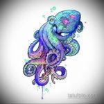 тату эскиз цветной осьминог 16.09.2019 №004 - tattoo sketch beautiful colore - tatufoto.com