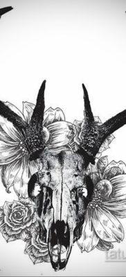эскизы тату черепа животных 17.09.2019 №012 – animal skull tattoo designs – tatufoto.com