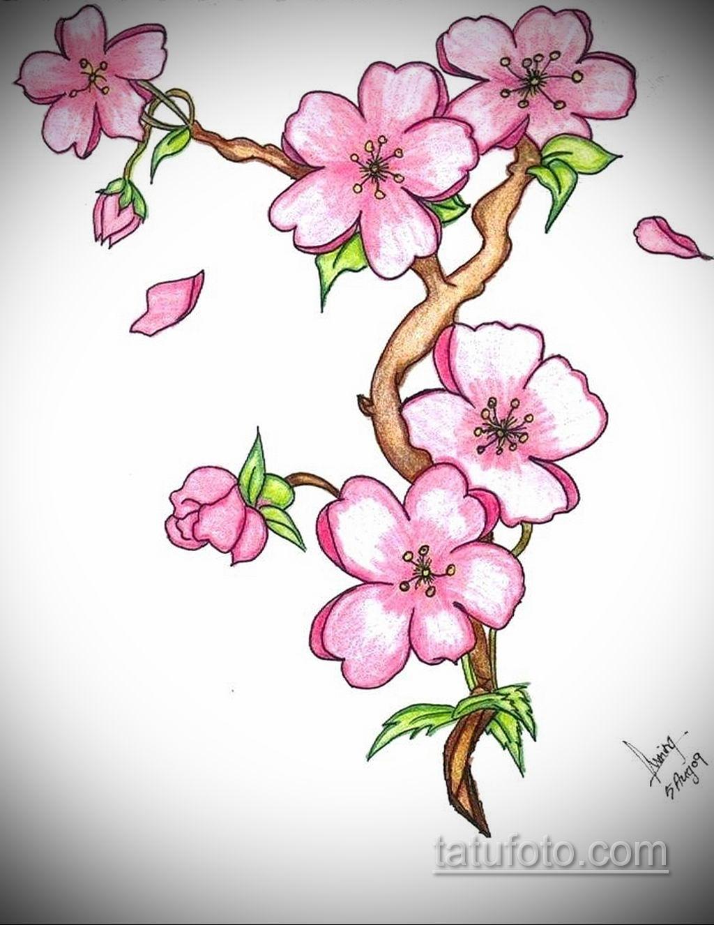 drawings of flowers - HD820×1061