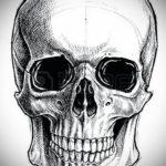 эскиз для тату череп простой 15.09.2019 №052 - sketch for tattoo skull simple - tatufoto.com