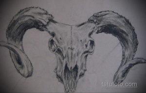 эскиз тату череп с рогами 17.09.2019 №054 - Skull tattoo sketch with horns - tatufoto.com