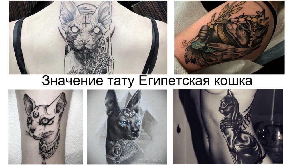 Значение тату Египетская кошка - информация про особенности рисунка и фото примеры интересных вариантов готовых тату
