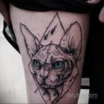 тату Египетская кошка 18.11.2019 №119 -Egyptian cat tattoo- tatufoto.com