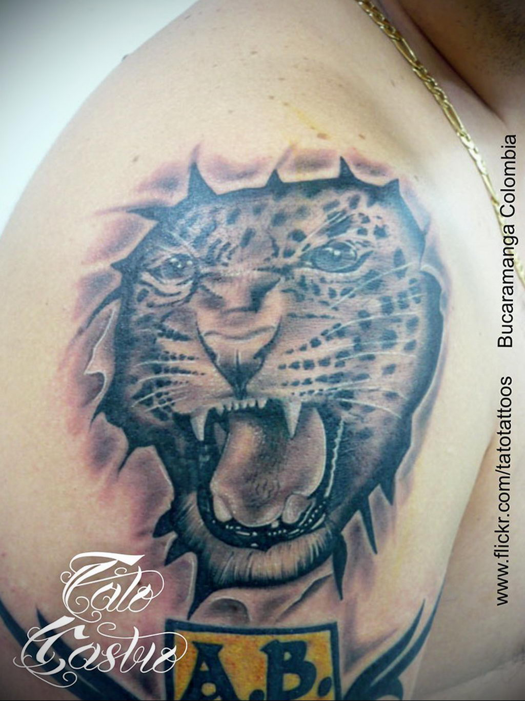 Фото тату Гепард 12.01.2020 №078 -cheetah tattoo- tatufoto.com