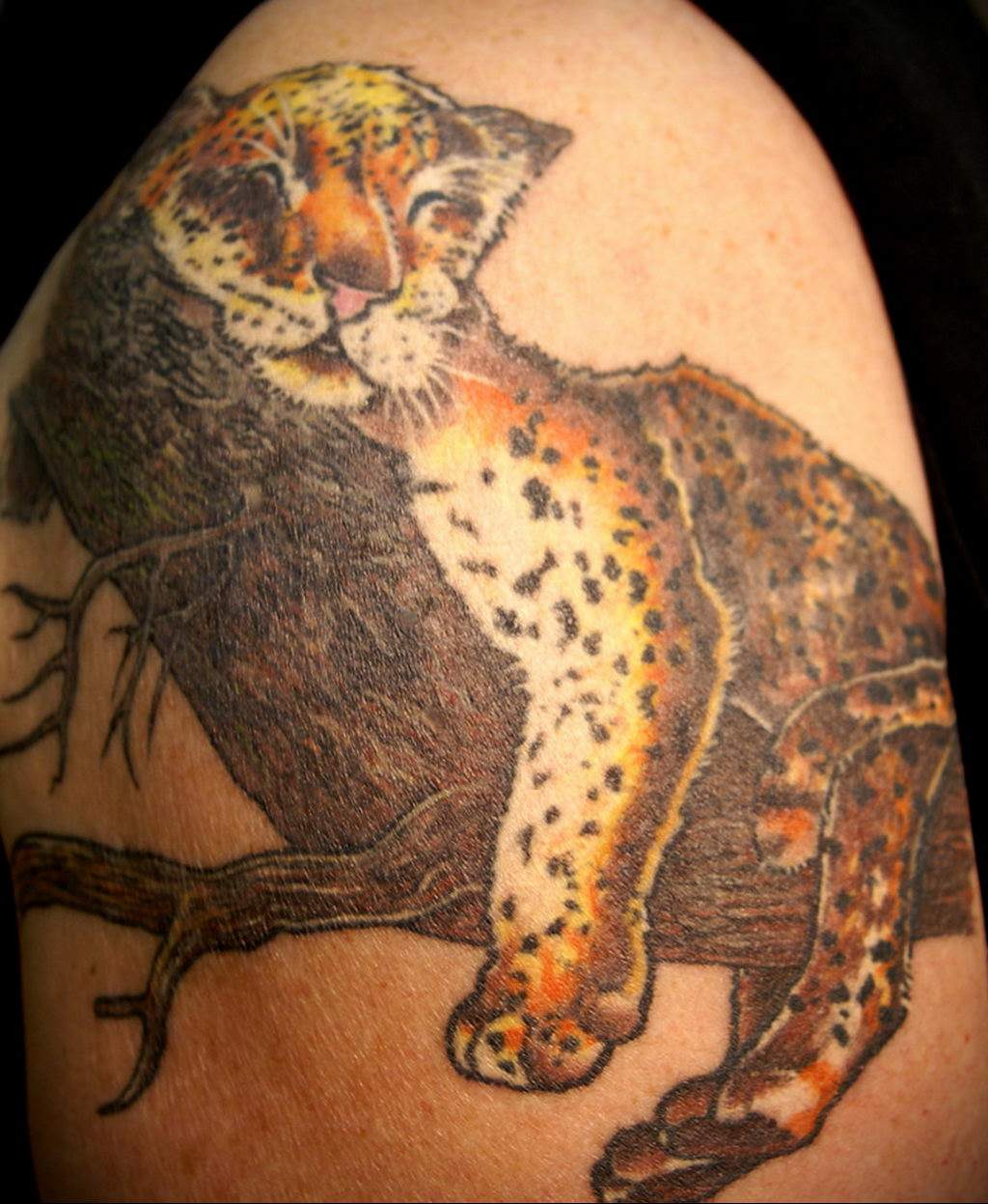 Фото тату Гепард 12.01.2020 №093 -cheetah tattoo- tatufoto.com