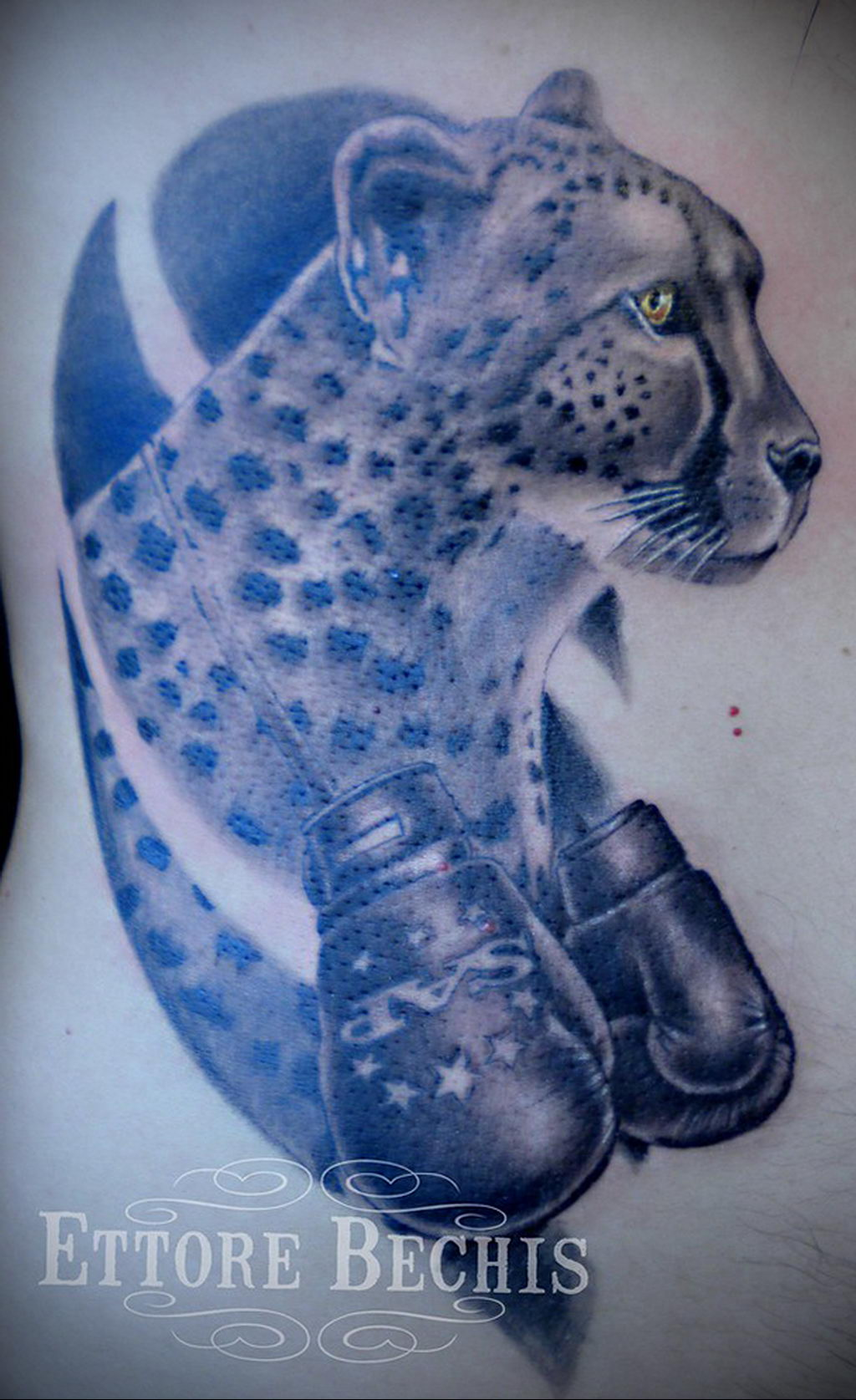 Фото тату Гепард 12.01.2020 №108 -cheetah tattoo- tatufoto.com