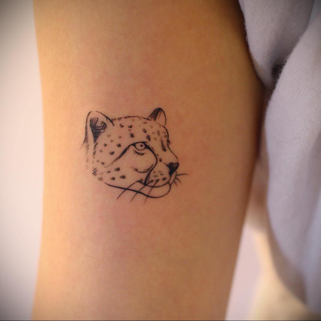 Фото тату Гепард 12.01.2020 №224 -cheetah tattoo- tatufoto.com