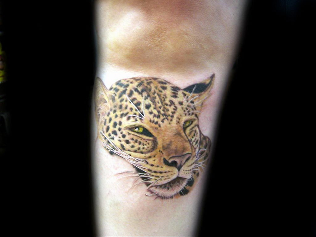 Фото тату Гепард 12.01.2020 №304 -cheetah tattoo- tatufoto.com