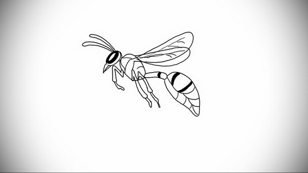 drawing wasp 07.01.2020 №1002 -wasp tattoo sketch- tatufoto.com