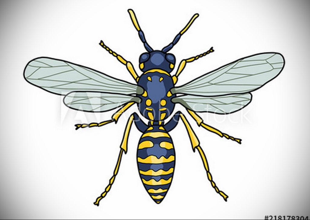 drawing wasp 07.01.2020 №1018 -wasp tattoo sketch- tatufoto.com