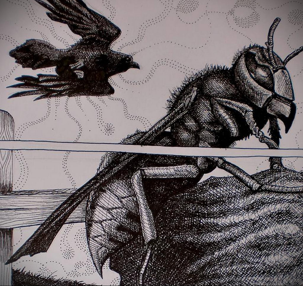 drawing wasp 07.01.2020 №1024 -wasp tattoo sketch- tatufoto.com