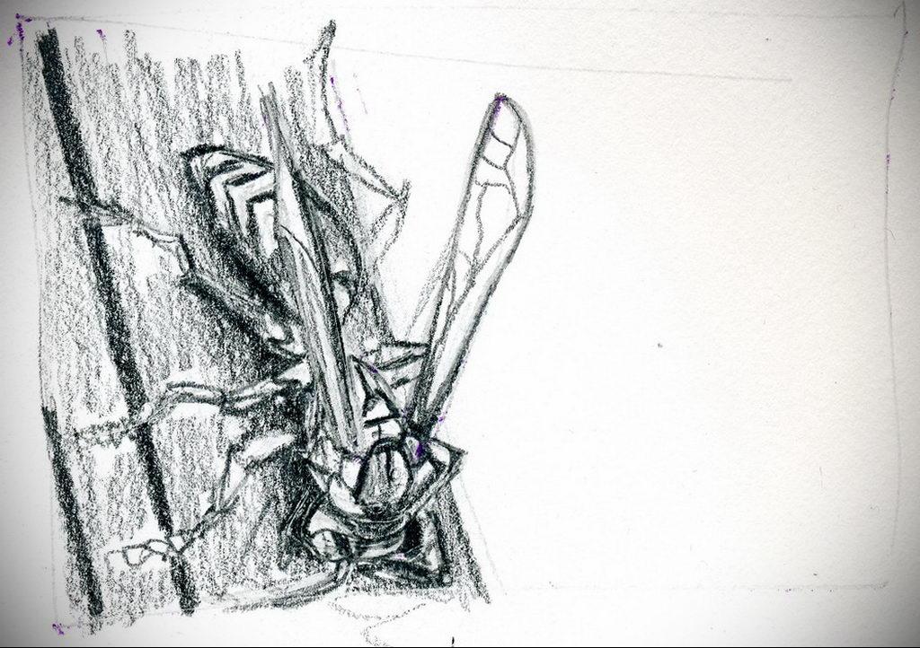 drawing wasp 07.01.2020 №1034 -wasp tattoo sketch- tatufoto.com