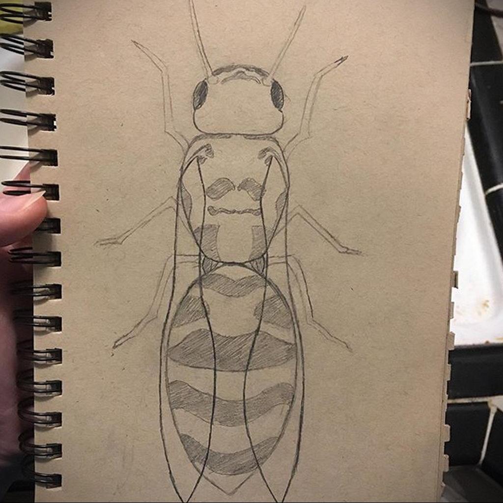 drawing wasp 07.01.2020 №1036 -wasp tattoo sketch- tatufoto.com