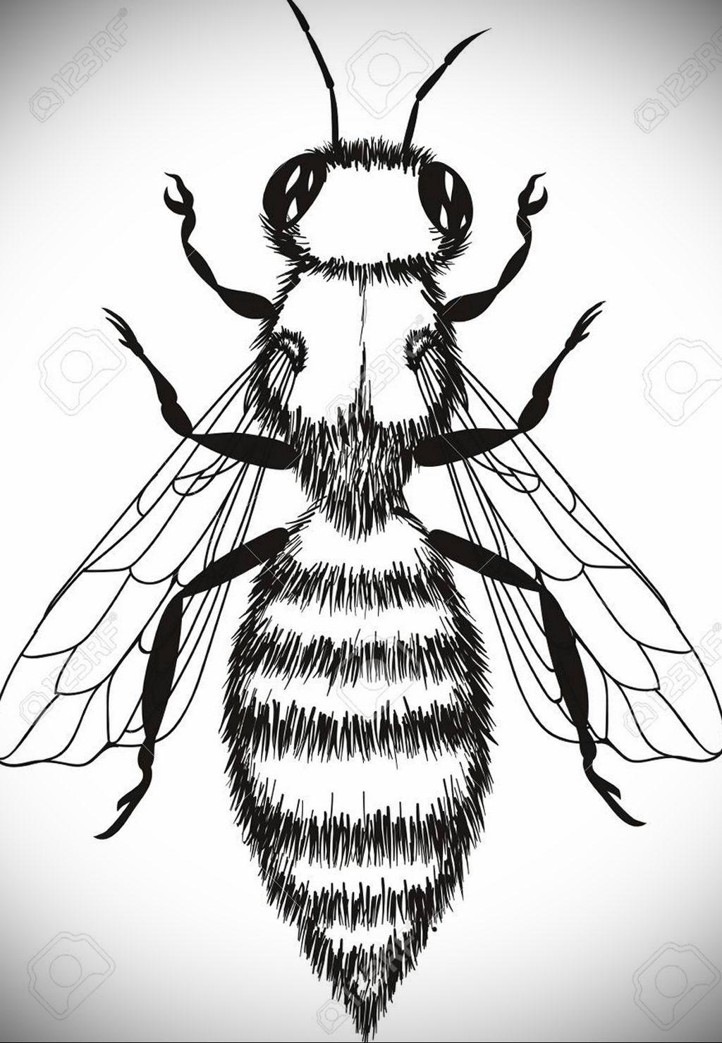 drawing wasp 07.01.2020 №1037 -wasp tattoo sketch- tatufoto.com