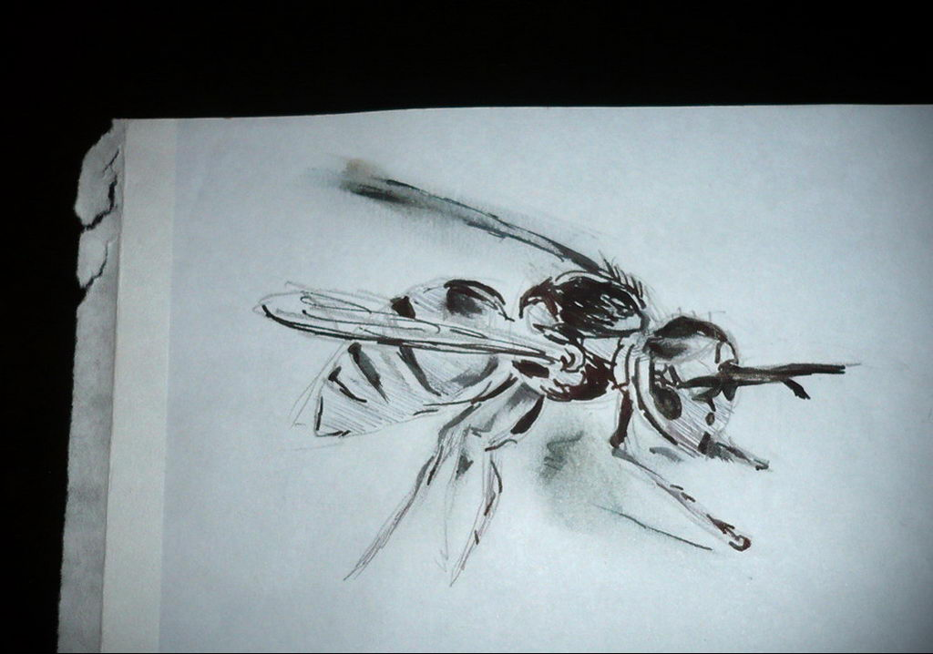 drawing wasp 07.01.2020 №1049 -wasp tattoo sketch- tatufoto.com