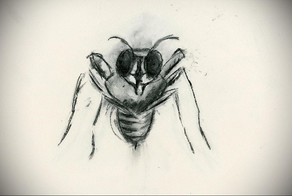 drawing wasp 07.01.2020 №1075 -wasp tattoo sketch- tatufoto.com