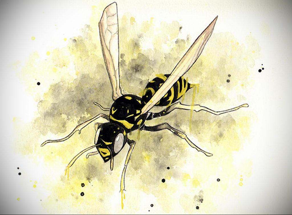 drawing wasp 07.01.2020 №1082 -wasp tattoo sketch- tatufoto.com