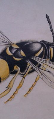 wasp tattoo sketch 07.01.2020 №038 -wasp tattoo sketch- tatufoto.com