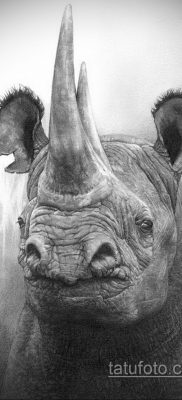 фото эскиза тату носорог 02.02.2020 №041 -rhino tattoo sketches- tatufoto.com