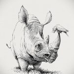эскиз тату носорог 02.02.2020 №032 -rhino tattoo sketches- tatufoto.com