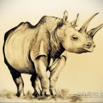 эскиз тату носорог 02.02.2020 №050 -rhino tattoo sketches- tatufoto.com