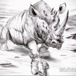 эскиз тату носорог 02.02.2020 №054 -rhino tattoo sketches- tatufoto.com