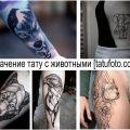 Значение татуировок с животными - информация про особенности рисунков и фото примеры готовых тату