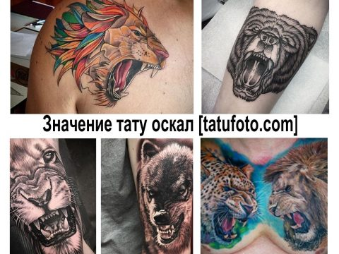 Значение тату оскал - информация про смысл рисунка и фото примеры готовых тату