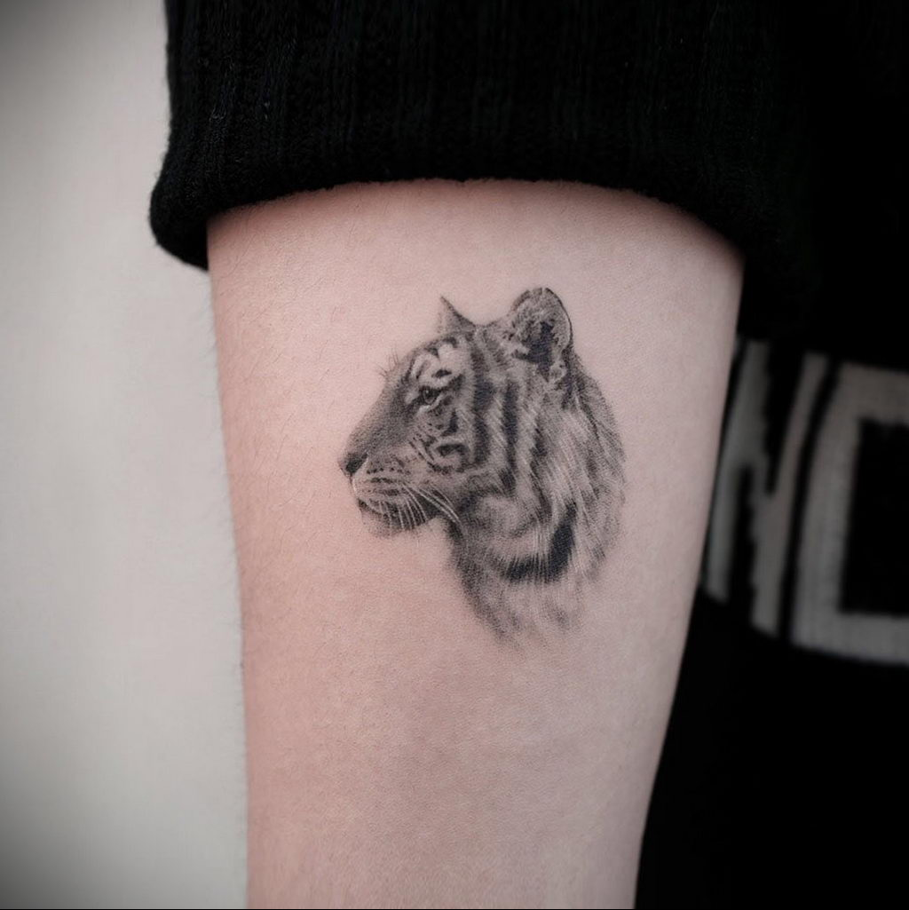 Фото примеры татуировок с тигром от 11.03.2020 – фото для tatufoto.com 4