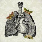 Фото татуировки с легкими человека 23.03.2020 №036 -lung tattoos- tatufoto.com