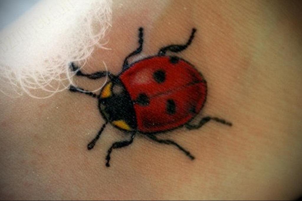 Фото тату про любовь рисунок Божья Коровка 03.02.2020 №147 -ladybug- tatufoto.com