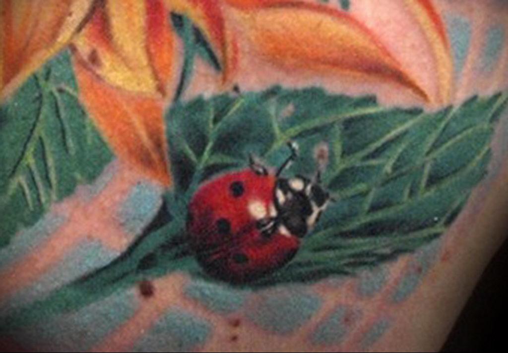 Фото тату про любовь рисунок Божья Коровка 03.02.2020 №164 -ladybug- tatufoto.com