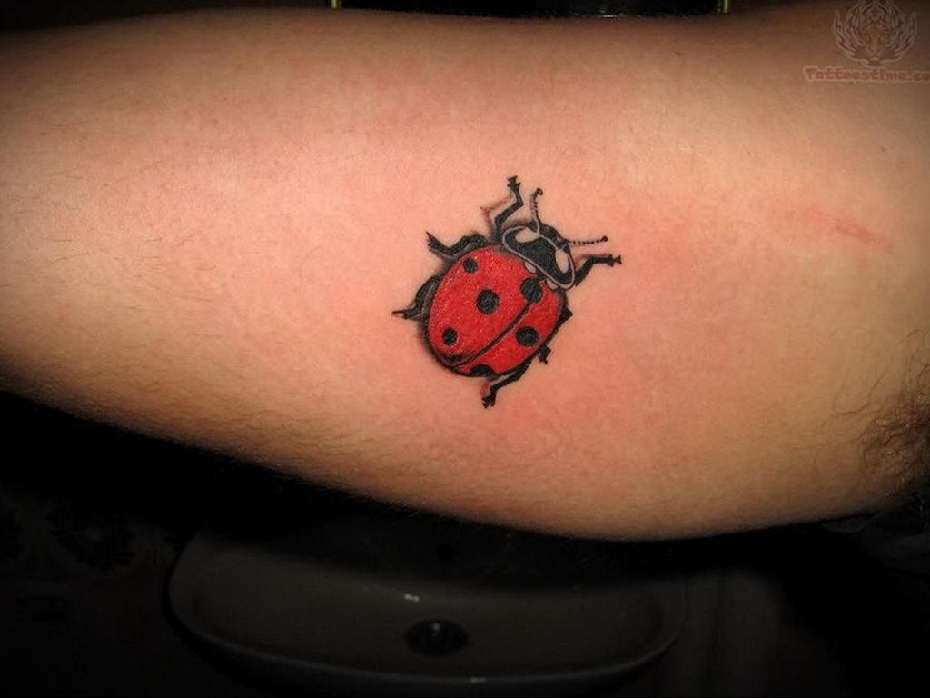 Фото тату про любовь рисунок Божья Коровка 03.02.2020 №191 -ladybug- tatufoto.com