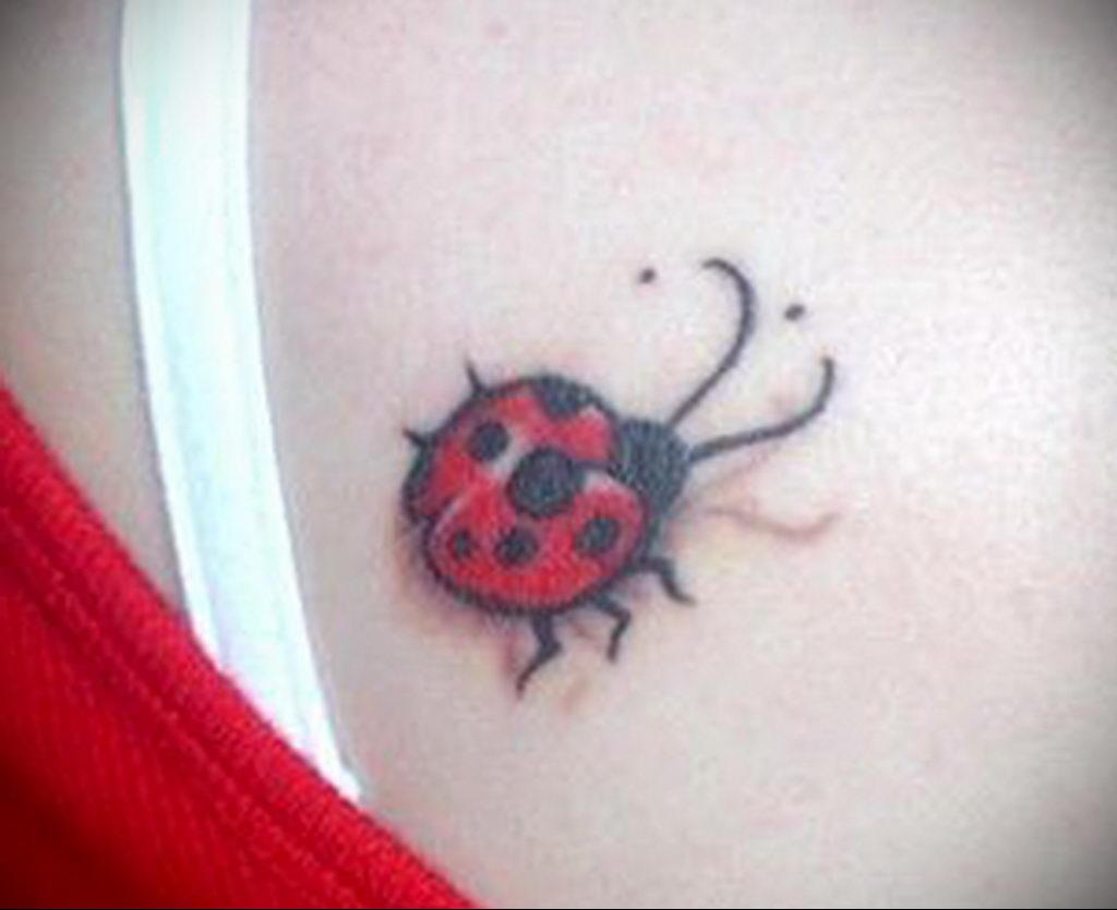 Фото тату про любовь рисунок Божья Коровка 03.02.2020 №196 -ladybug- tatufoto.com
