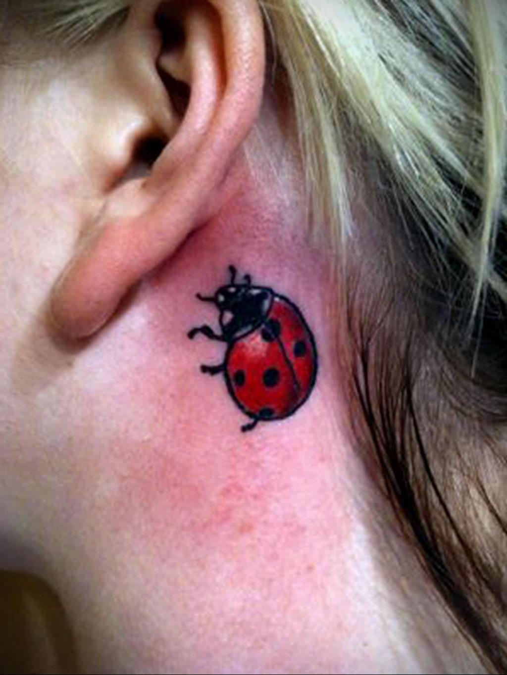 Фото тату про любовь рисунок Божья Коровка 03.02.2020 №198 -ladybug- tatufoto.com
